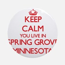 Keep calm you live in Spring Grov Ornament (Round)