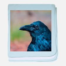 Portrait of a Raven baby blanket