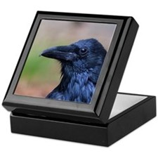 Portrait of a Raven Keepsake Box