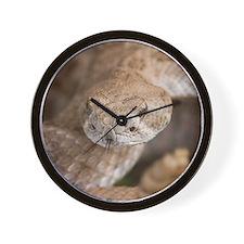 Rattlesnake Wall Clock