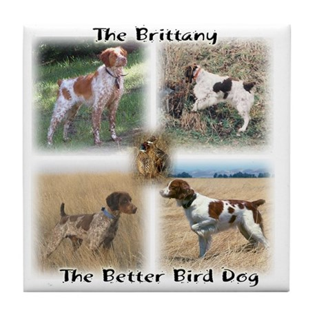 The Brittany The Better Bird Dog Tile Coaster