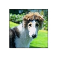 "Borzoi Bonnet Ears Square Sticker 3"" x 3"""