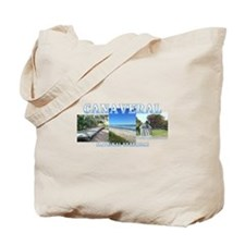 Marco Rubio 2016 Tote Bag