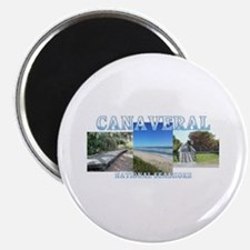 Canaveral NS Magnet