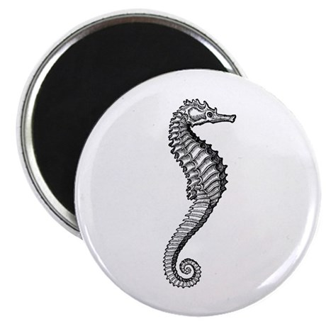 "Sea Horse Image 2.25"" Magnet (100 pack)"