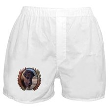 Great Buffalo Boxer Shorts