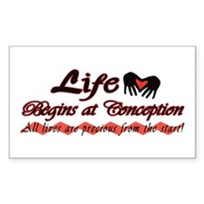Life Begins Rectangle Decal