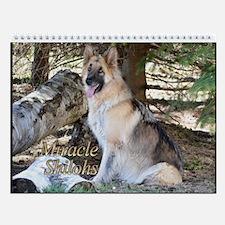 2015 Miracle Shilohs Wall Calendar