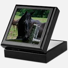 A Black Horse Keepsake Box