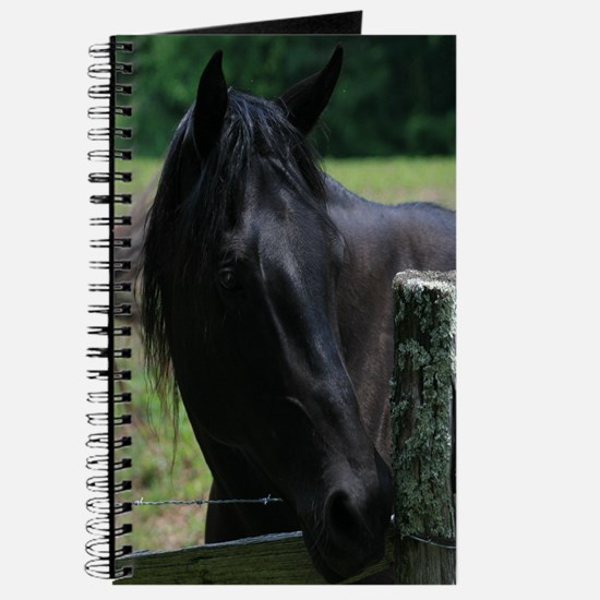 A Black Horse Journal