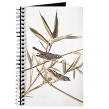 Audubon's Solitary Flycatcher Journal