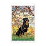 Spring / Rottweiler Sticker (Rectangle)