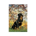 Spring / Rottweiler Rectangle Magnet (10 pack)