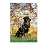 Spring / Rottweiler Postcards (Package of 8)