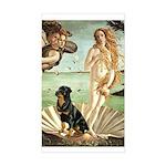Venus & Rottweiler Sticker (Rectangle)