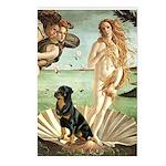 Venus & Rottweiler Postcards (Package of 8)