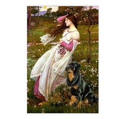 Windflowers / Rottweiler Postcards (Package of 8)