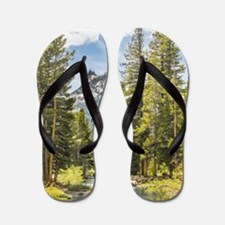 Mountain River Scene Flip Flops