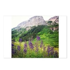 Crested Butte Wildflowers Postcards (Package of 8)