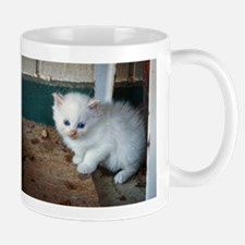White Kitten Mugs