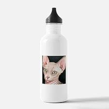 Cat 412 sphynx Water Bottle