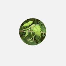 Lettuce Leaf Dragon Mini Button