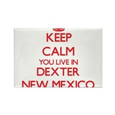 Keep calm you live in Dexter New Mexico Magnets