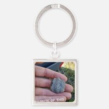 Trilobite of this! Square Keychain