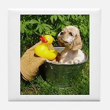 Cute Cocker Spaniel in Bath Tub Tile Coaster