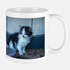 Black + White Kitten Mugs