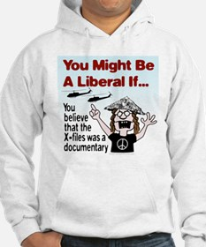 Liberal Paranoid Delusions Hoodie