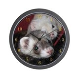 Ferret Basic Clocks