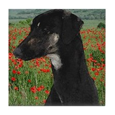 Sloughi in Red Poppy Field Tile Coaster