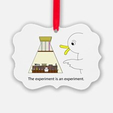 The Experiment Is An Experiment. Ornament