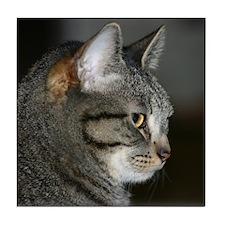 Cat with an attitude Tile Coaster