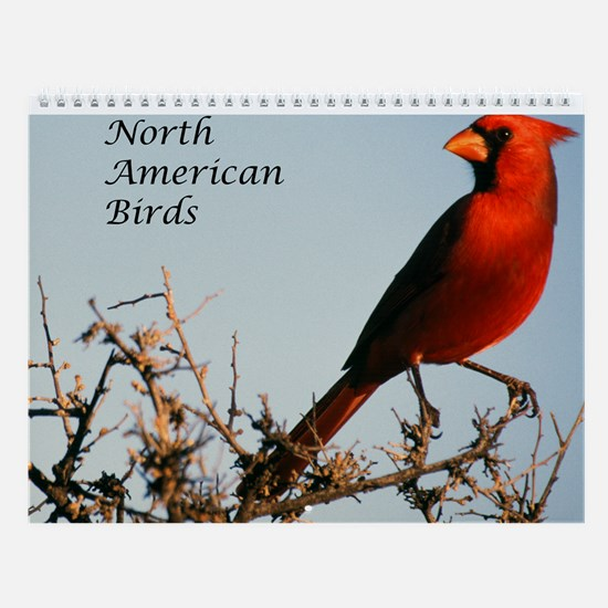 North American Birds Wall Calendar