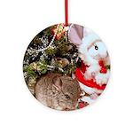 Baby Chinchilla Ornament (Round)