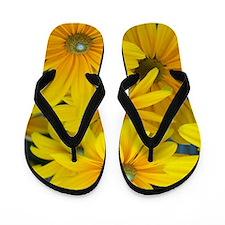 Yellow summer susan flowers Flip Flops