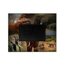 Cute African elephant Picture Frame