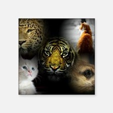 "Cool Black cat face Square Sticker 3"" x 3"""
