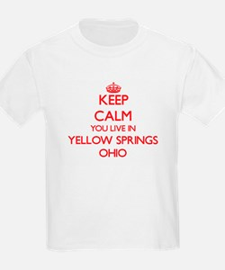 Keep calm you live in Yellow Springs Ohio T-Shirt