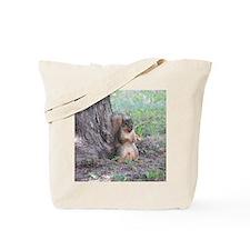 Boy Squirrel By Tree Tote Bag