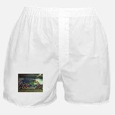 Houston graffiti Boxer Shorts