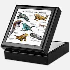 Iguanas of the World Keepsake Box