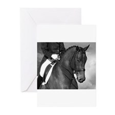 Funny Black horse Greeting Cards (Pk of 20)