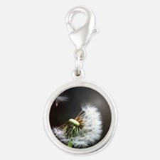 Dandelion blowing Charms