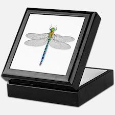Funny Dragonfly Keepsake Box