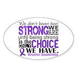 Epilepsy Bumper Stickers