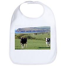 Pembrokeshire cows, Wales, United Kingdom Bib