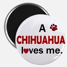 A Chihuahua Loves Me Magnet